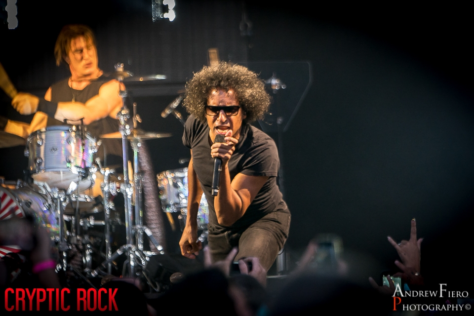 Alice in Chains (8)
