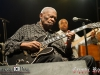 bbking_greatsouthbayfestival_072014_stephpearl_12