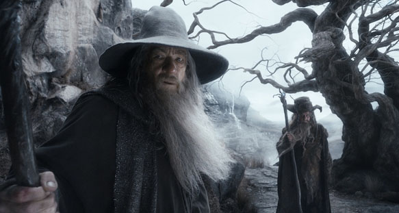 Gandalf (played by Ian McKellen) The Hobbit: The Desolation of Smaug
