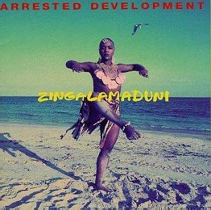 Arrested_Development-_Zingalamduni_-_album_cover
