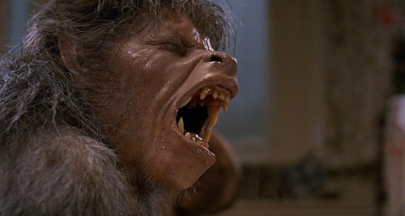 An American Werewolf in London Wolf - This Week in Horror Movie History - An American Werewolf in London (1981)