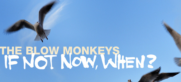 the blow monkeys 158697 if not now when1 - The Blow Monkeys - If Not Now, When? (Album Review)