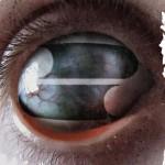 Filter – Crazy Eyes (Album Review)