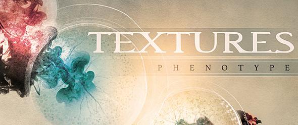 textures slide - Textures - Phenotype (Album Review)