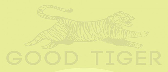good tiger slide - Good Tiger - A Head Full Of Moonlight (Album Review)