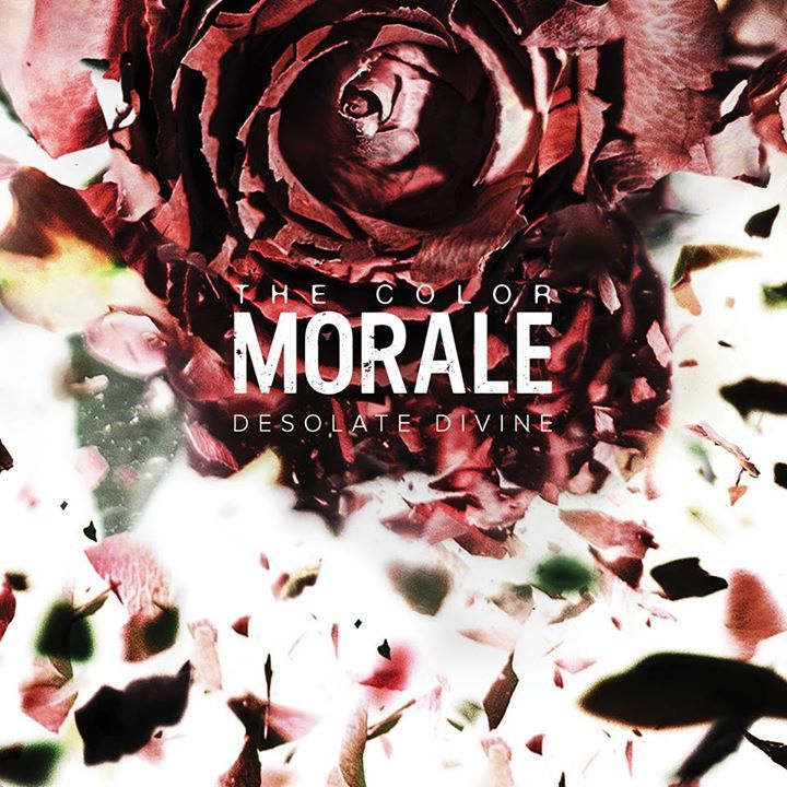 color morale album