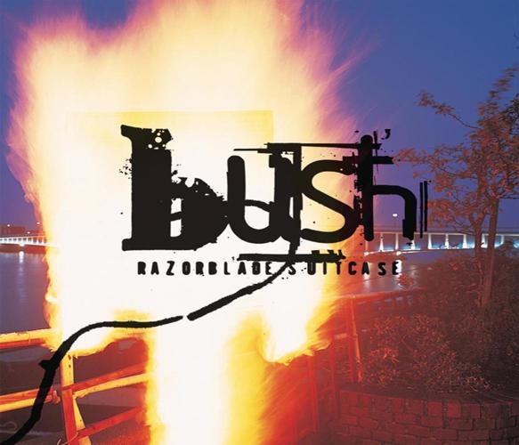 bush razor