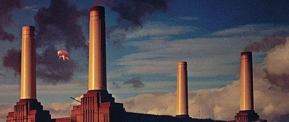 pink floyd animals slide - Pink Floyd's Animals - Running Wild 40 Years Later