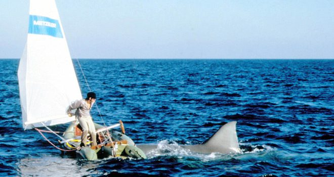 jaws 2 2 - This Week in Horror Movie History - Jaws 2 (1978)