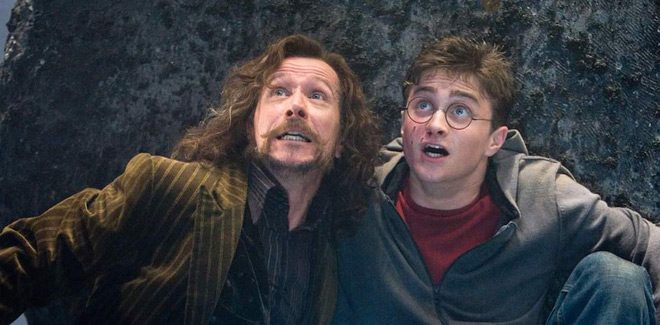 harry 4 - Harry Potter and the Order of the Phoenix - A Magical Journey 10 Years Later