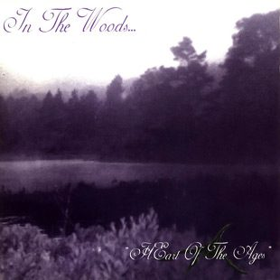 in the 2 - Interview - James Fogarty & Anders Kobro of In The Woods . . .