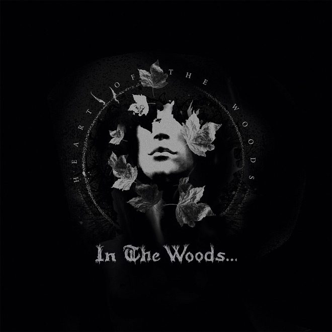 in the album - Interview - James Fogarty & Anders Kobro of In The Woods . . .