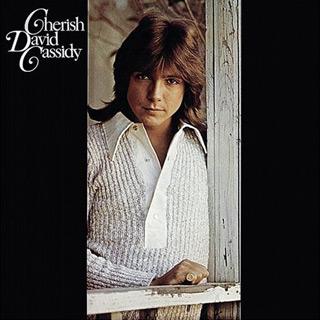 david album 1 - David Cassidy - Forever A Teen Heartthrob