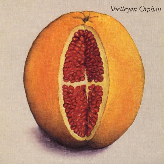 hum album - Shelleyan Orphan - Humroot 25 Years Later