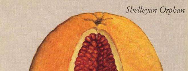 hum slide - Shelleyan Orphan - Humroot 25 Years Later