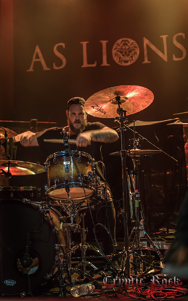 as lions_0027