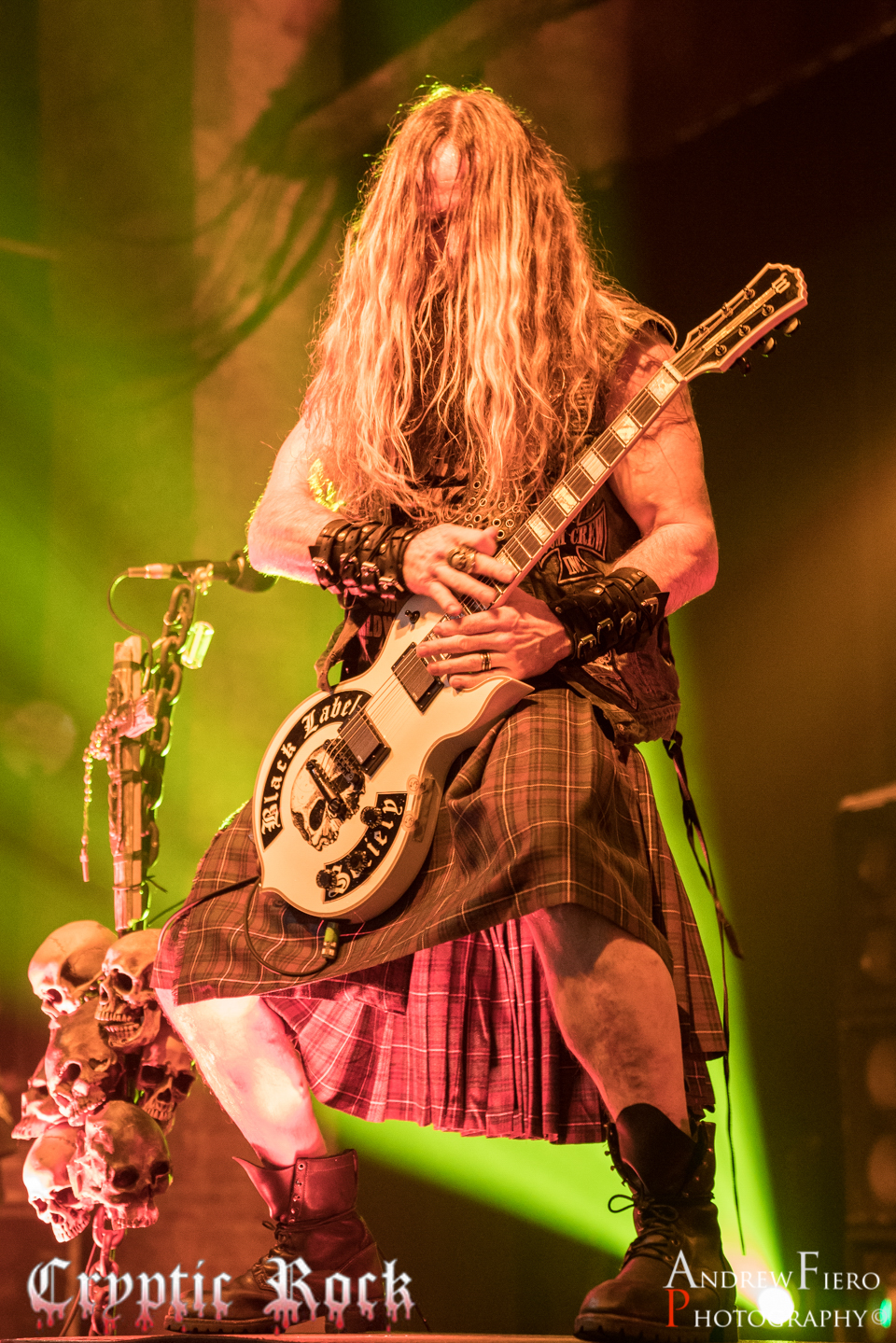 Black Label Society (17)