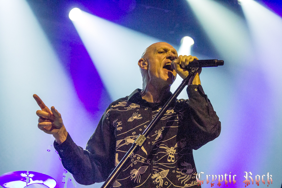 Midnight Oil (18) for site-Edit