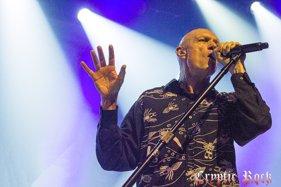 Midnight Oil (21) for site-Edit