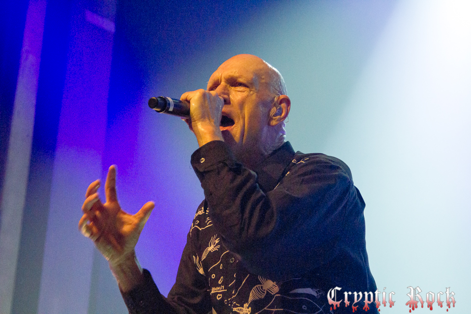 Midnight Oil (56) for site-Edit