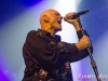 Midnight Oil (42) for site-Edit