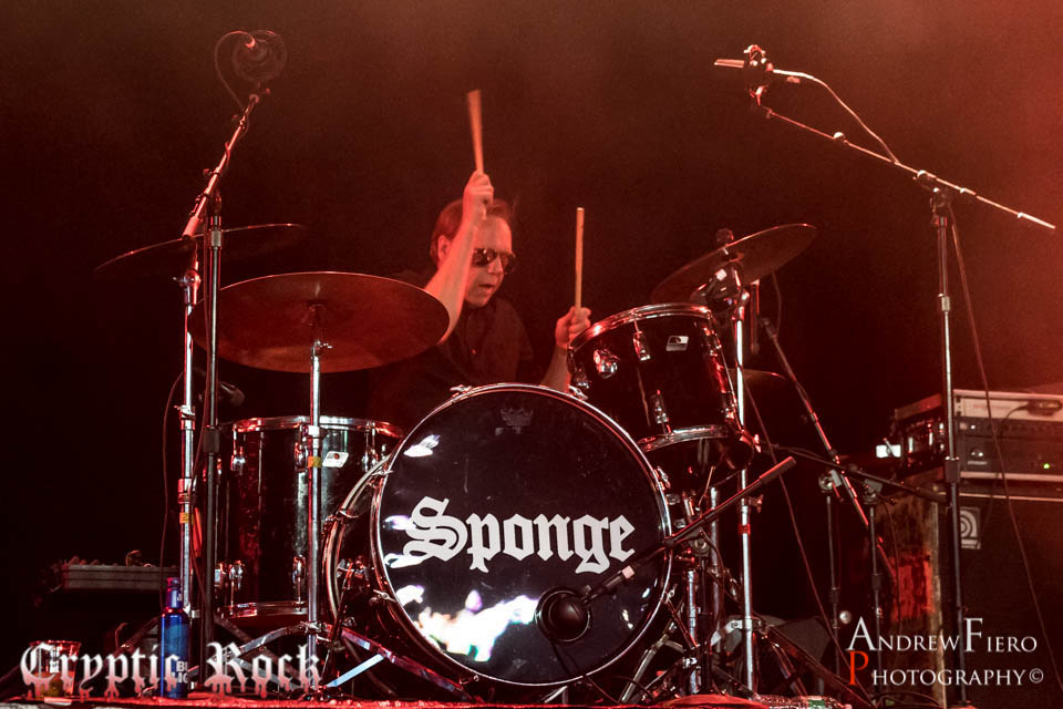 Sponge 12-16-17 (9)