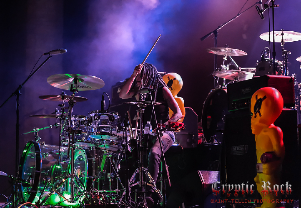 the dead deads_0476