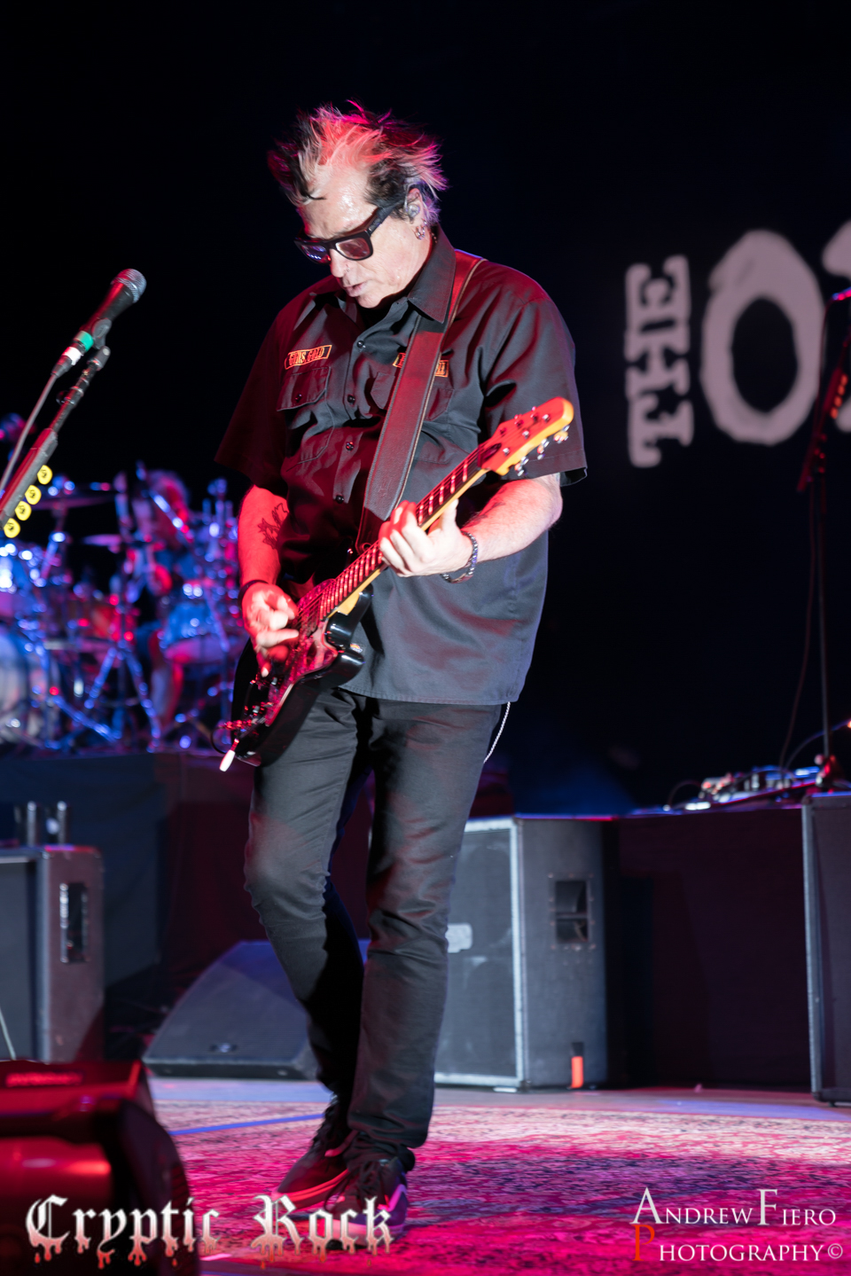 The Offspring 8-25-18 (15)