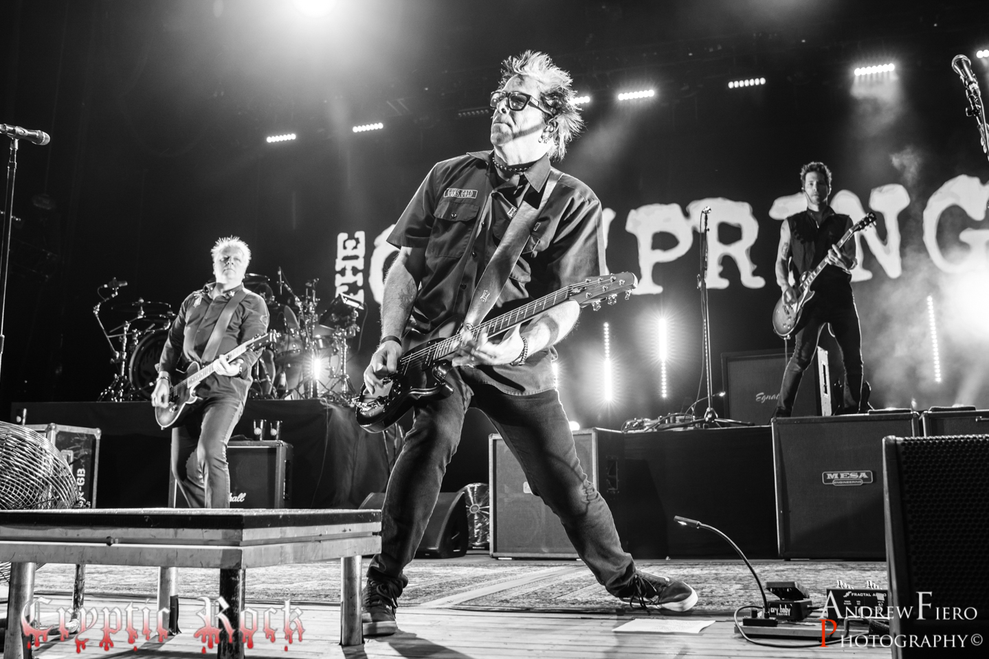 The Offspring 8-25-18 (3)