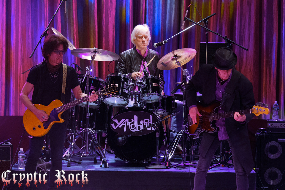 Yardbirds (35) for site