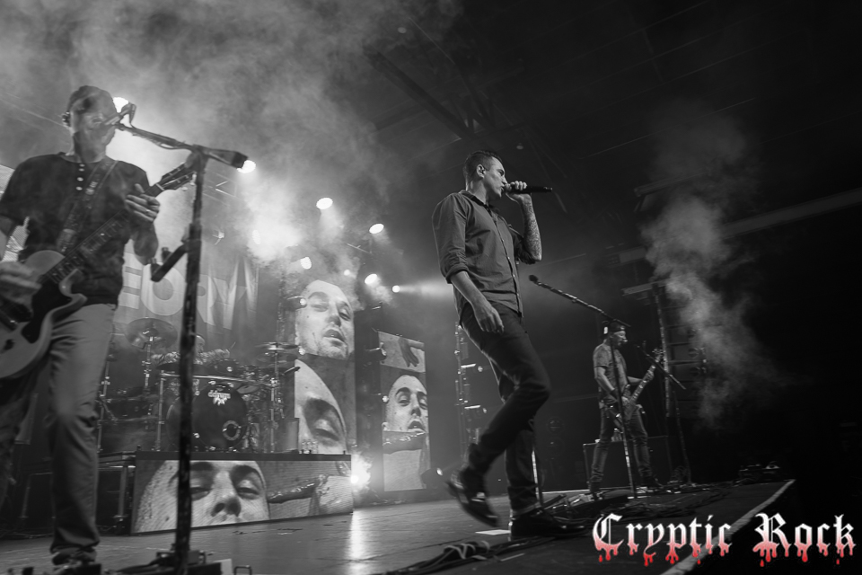 Theory of a Deadman (22)