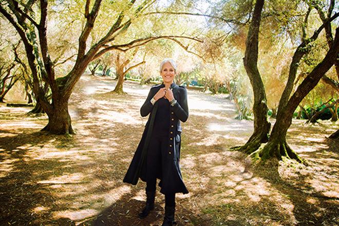 joan promo - Joan Baez - Whistle Down the Wind (Album Review)