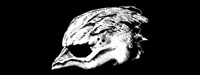 seagull slide - Legend of the Seagullmen - Legend of The Seagullmen (Album Review)