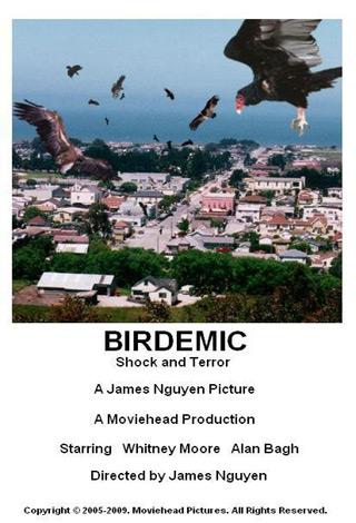bird 3 - Interview - Whitney Moore