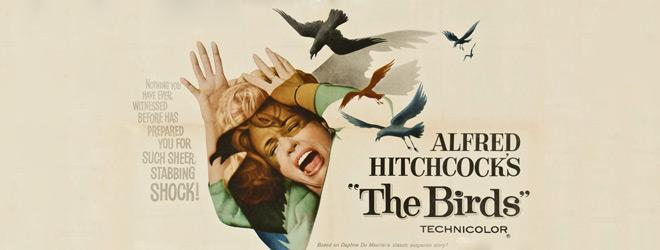 birds slide - The Birds - 55 Years of Ornithophobia