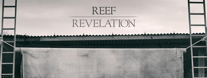 reef slide - Reef - Revelation (Album Review)