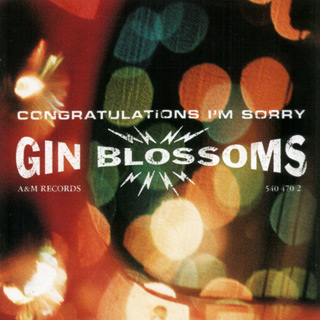 gin 1 - Interview - Jesse Valenzuela of Gin Blossoms