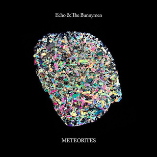 echo 1 - Interview - Will Sergeant of Echo & the Bunnymen