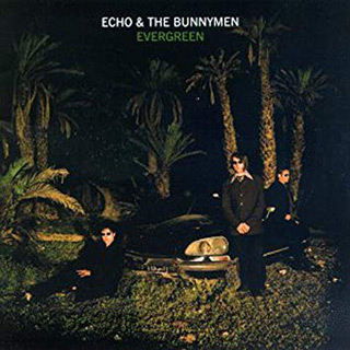echo 3 - Interview - Will Sergeant of Echo & the Bunnymen