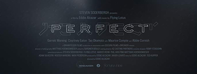 perfect slide - Perfect (Movie Review)