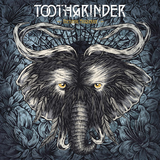 nocturnal masquerade - Interview - Justin Matthews of Toothgrinder